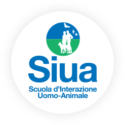logo Siua