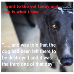 L'inchiesta sul massacro dei Greyhound continua a non essere presa in considerazione.