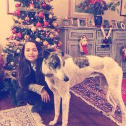 Quando si parla di vita da cani: salvato levriero destinato alla soppressione