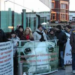 Manchester Greyhound Racing Awards Gala Protest – January 26 2014