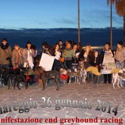 Grande partecipazione alle veglie di Pet Levrieri, a sostegno della protesta di Manchester contro l'industria delle corse.