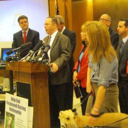 I legislatori incoraggiano maggior tutela per i levrieri utilizzati nelle corse