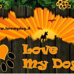Grazie agli amici di Love My Dog