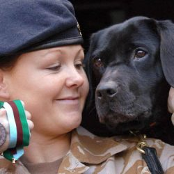 EXCLUSIVE: Pitiful fate of 1,000 military dogs destroyed in ten years