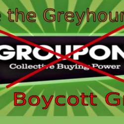 Groupon vende biglietti per le corse con i cani