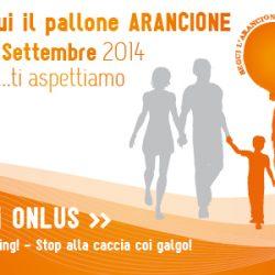"""Festa di Consegna dei Galgo presso  """"Nonsolobau"""", a Parma, sabato 13 settembre!"""