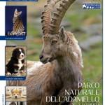 copertina n1 di Pet Lab