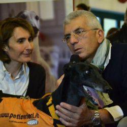 """""""Adotta un levriero"""", un futuro migliore per i galgos spagnoli"""