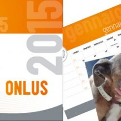 Il Calendario 2015 di Pet levrieri