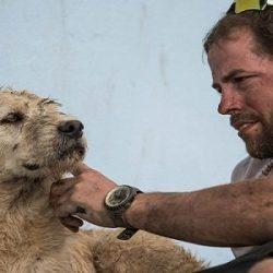 Il cane randagio che ha percorso 700 KM in Amazzonia con gli atleti svedesi