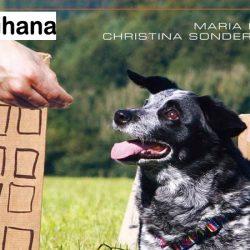 Il cane impara giocando