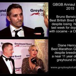 """Se questi sono """"I migliori dell'anno"""" per l'ente corse (GBGB), chissà  i peggiori."""