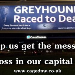 Un mega cartellone  contro il greyhound racing nel centro di Londra! Supportiamo questa iniziativa.