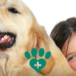 Il nuovo manuale pratico e i corsi di Pet Therapy di Siua