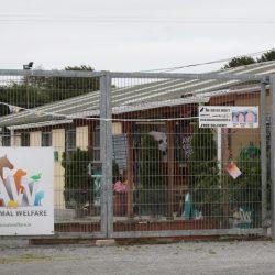 Aiutiamo Limerick Animal Welfare a completare il nuovo Santuario