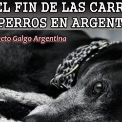 GREY2K USA WORLDWIDE APPEALS TO THE   Chamber of Deputies of Argentina TO BAN GREYHOUND RACING