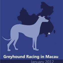 Report di Grey2k Usa sul Greyhound racing a Macao