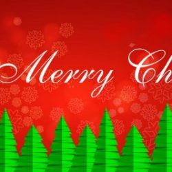 OUR BEST WISHES FOR A HAPPY AND PEACEFUL CHRISTMAS TO YOU ALL!