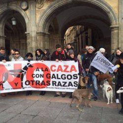 Manifestazione contro la caccia a Salamanca!