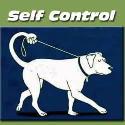 Autocontrollo: a cosa serve e perché è così importante?