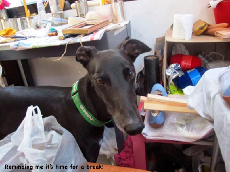 Lucy -in studio- ricorda dolcemente a Dawn-Joy di prendersi una pausa