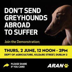 IRLANDA, COME HAI POTUTO? 2 giugno – Dublino. Manifestazione contro l'esportazione dei greyhound in Cina