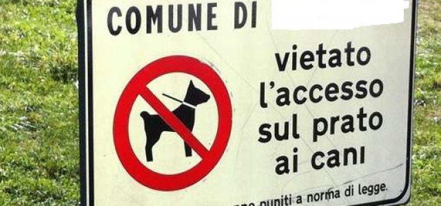 Tar Lazio: illegittimo per i Comuni vietare l'accesso ai cani nelle aree verdi
