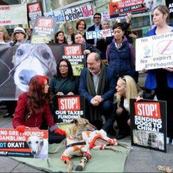Le immagini della manifestazione di Sidney per fermare l'esportazione dei greyhound al canidrome di Macao