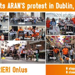 Photo albums of Italian events in support of the Aran's Protest in Dublin, June 2.