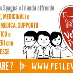 """Il progetto """"Veterinari Pet levrieri Senza Frontiere"""": in cosa consiste."""
