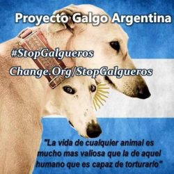 "Anche Proyecto Galgo Argentina parteciperà al nostro evento internazionale """"FREEDOM FOR GREYHOUNDS – CLOSE THE CANIDROME AND ALL RACE TRACKS WORLDWIDE"". 24 E 25 SETTEMBRE"
