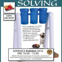 Problem Solving – Sorridi con la coda & Pet Levrieri Onlus