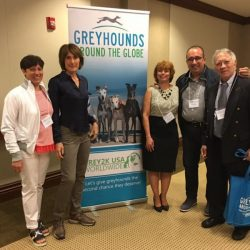 Thank you GREY2K USA WORLDWIDE! The event 'Greyhounds Around The Globe'  was unique and very important, and should be repeated!