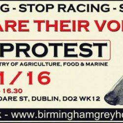 Dublin Protest against the greyhounds exportation – 9/11/2016