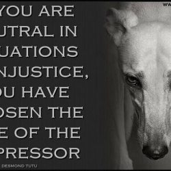 Greyhound Racing: Se decidi di rimanere neutrale di fronte a situazioni di ingiustizia, di fatto sceglie di stare dalla parte dell'oppressore. Non rimanere neutrale! Anche tu puoi contribuire a fare la differenza!