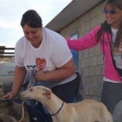 """La mia esperienza di socia a supporto dei veterinari nel Progetto  """"Veterinari Pet levrieri Senza Frontiere"""""""