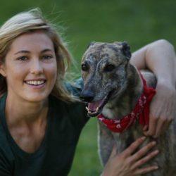 """'Un cane che risponde a tutti i requisiti"""": aprite il vostro cuore ad un greyhound e non ve ne pentirete"""