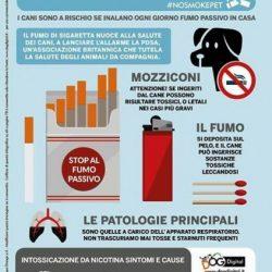 Il fumo passivo nuoce anche ai cani!