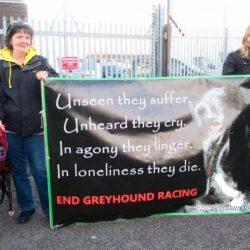 Newcastle – un grazie a Silvia Baggi e al gruppo anti-racing che sta facendo un gran lavoro in un territorio davvero difficile!