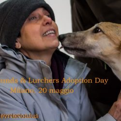 GREYHOUNDS AND LURCHERS ADOPTION DAY – Milano, 20 Maggio