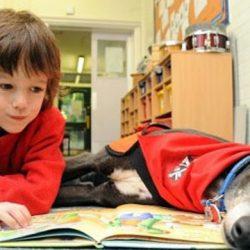 """Scuola primaria di Townsville: imparare a leggere con l'aiuto di compagni di classe """"veramente speciali""""! Great pets!"""