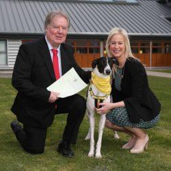Irlanda – Proposta di legge per limitare l'esportazione di greyhound