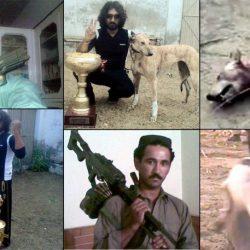 Irlanda – Greyhound esportati in Pakistan – Il ministro dell'Agricoltura nega l'evidenza dei fatti.