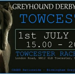 1° LUGLIO 2017 – Una grande protesta: THE BIG ONE (Greyhound Derby Final Protest)