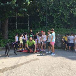 Sunny, greyhound irlandese salvato dalle corse, incontra i bambini – Oratorio di Rebbio (Co)