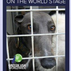 Compendio dei più importanti report pubblicati sul greyhound racing nel mondo. Ottimo lavoro di Grey2k Usa Worldwide