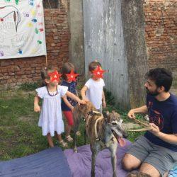 I levrieri, protagonisti nel progetto educativo per i bambini di una scuola d'infanzia di Milano