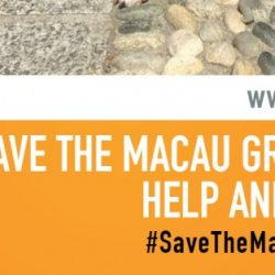 Italian VIPs stand with the Macau Greyhounds