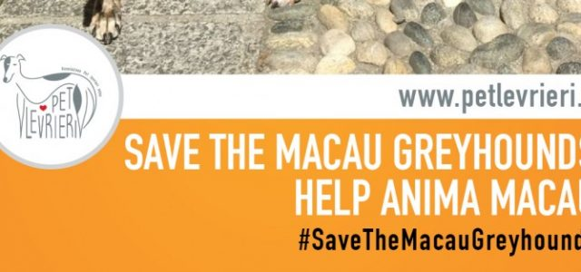 Italian VIPs stand with the Macau Greyhounds