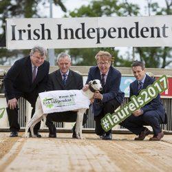 """Il vincitore di una delle corse di levrieri più prestigiose dell'Irlanda """"the Irish Independent Laurels"""", è stato trovato positivo alla cocaina."""